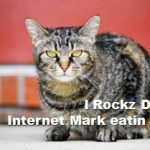 LOL Cat Internet Marketing